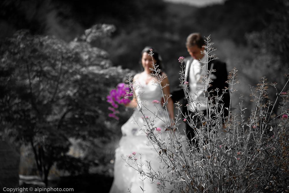 swiss alps marriage