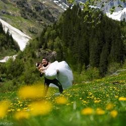 Wedding Planning Solutions