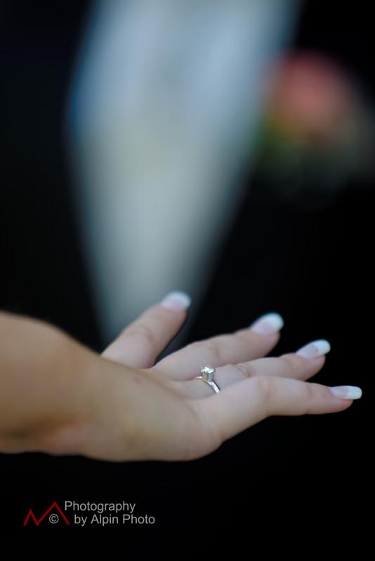 wedding celebrant switzerland